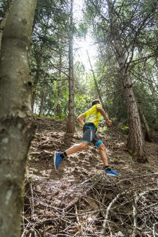 Ludovic Pommeret trail en forêt